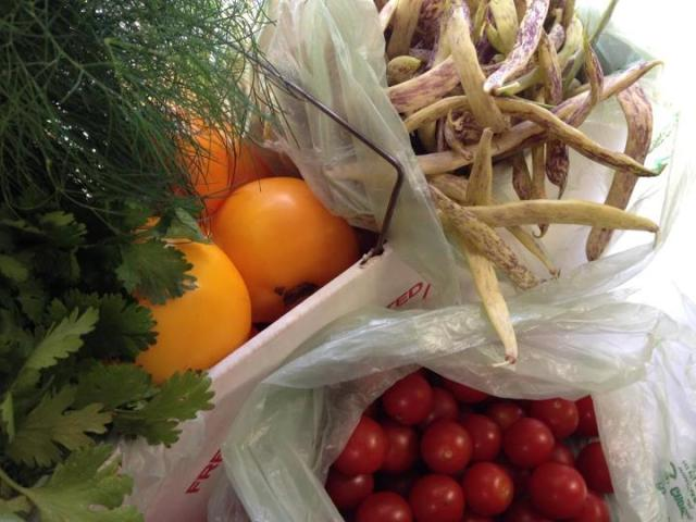 This is just a small sampling of the produce we've purchased from Riverview Gardens. Beautiful tomatoes, Dragon Tongue Beans and fennel picked and delivered to us at the truck!