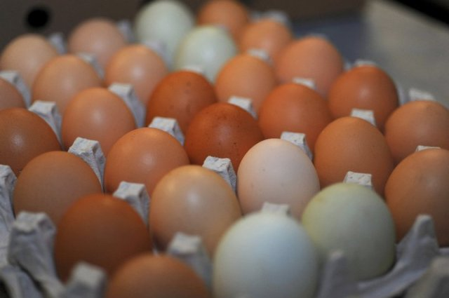 These eggs from Olden Produce are used in our kitchen, bakery and yes, even the BAR!